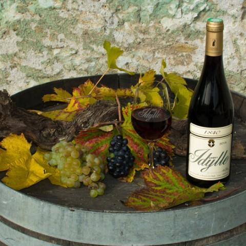 Dégustation au Domaine de l'Idylle - Vin de Savoie